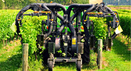 Vineyard Contract Services